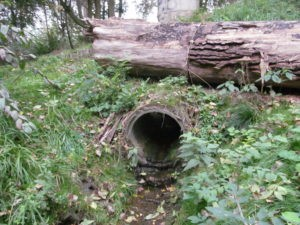 Wizja terenowa przed opracowaniem operatu wodnoprawnego