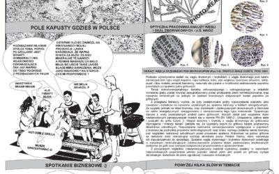 Propozycja zastosowania odpadów (popiołów) pogrillowych…